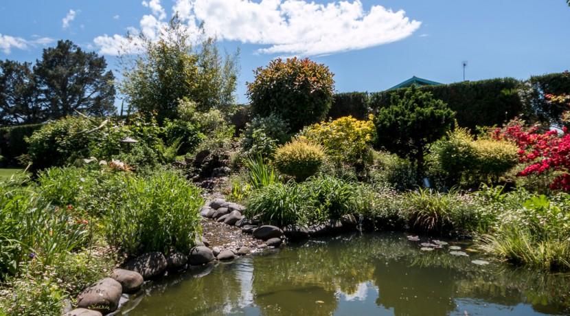 maison-soustons-exterieur-bassin06