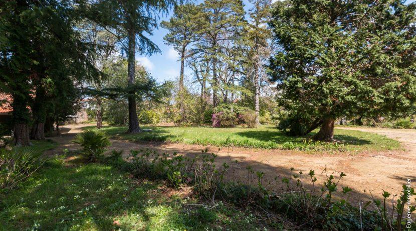 Jardin avant 05