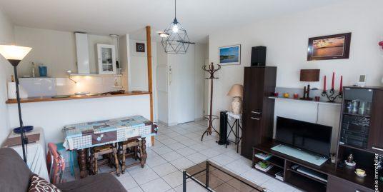 Appartement T2 34m²+ Balcon/Terrasse 8m²