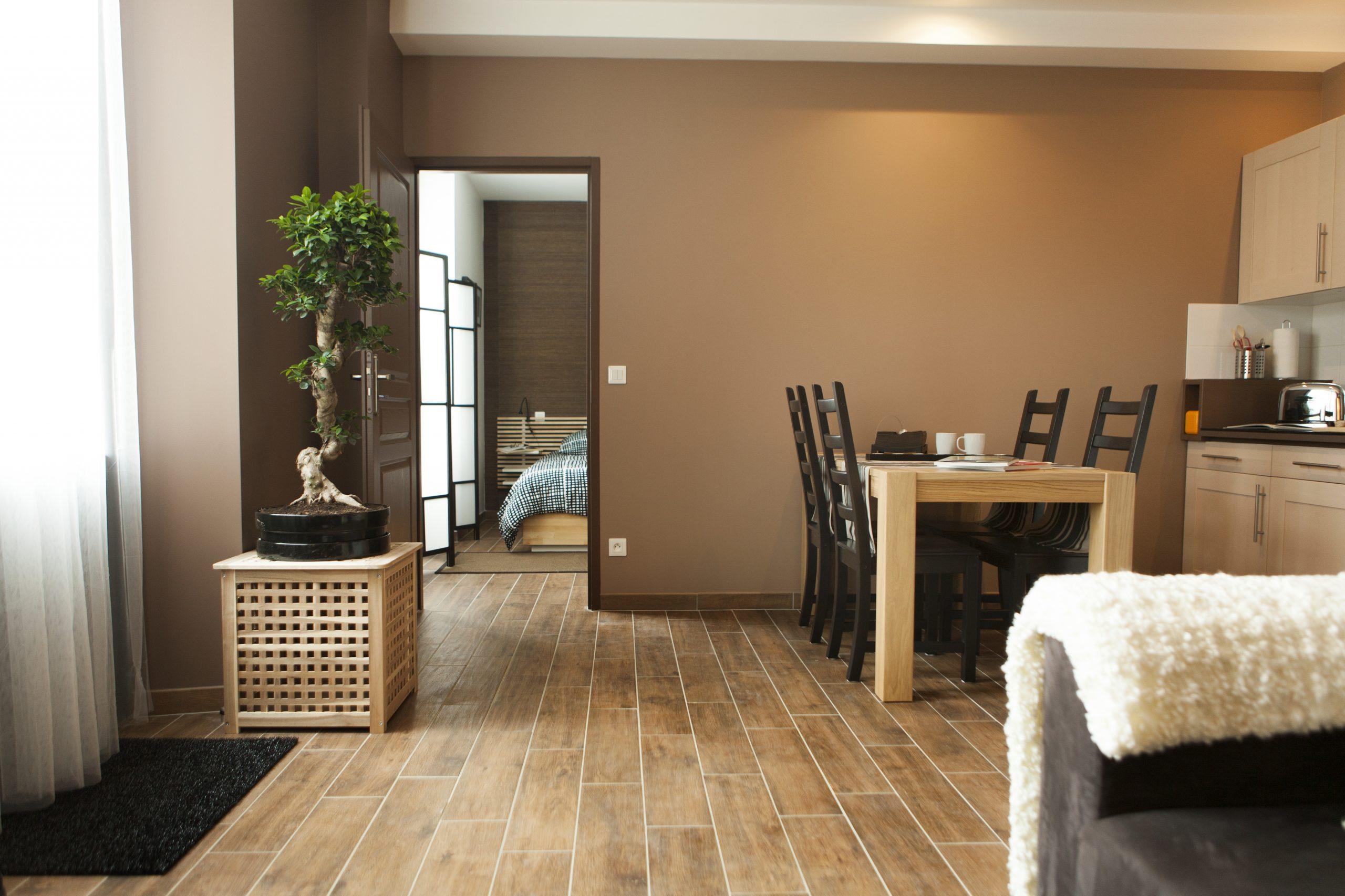 Appartement 41m² T2 Entièrement rénové vendu meublé
